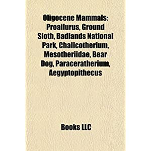 Oligocene Mammals: Proailurus, Ground Sloth, Badlands National ...